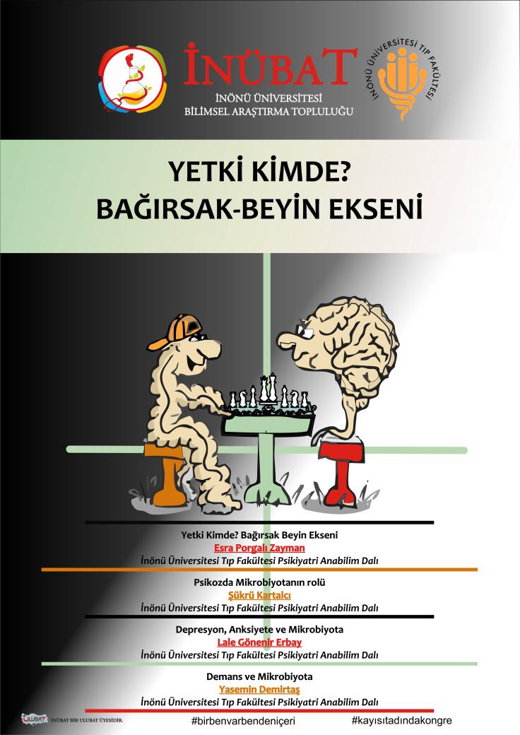 Bağırsak-Beyin Ekseni